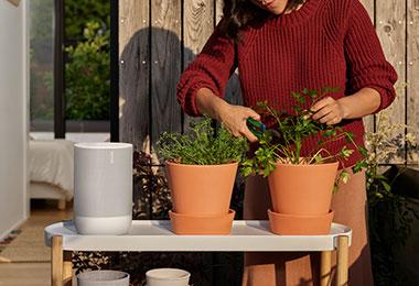 Move Lunar White Lifestyle Garden